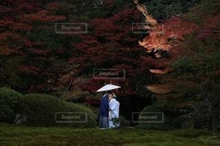 草の多い丘の上に立っている男の写真・画像素材[3668948]