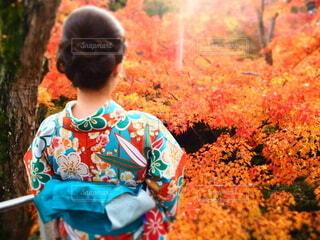 草の中に立っている小さな男の子の写真・画像素材[3697992]