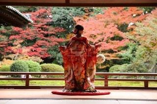 京都で紅葉前撮りの写真・画像素材[3897245]