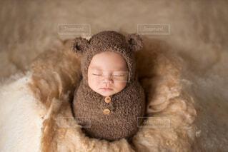 もこもこまんまるくまさん生後11日に撮影してもらったニューボーンフォトの写真・画像素材[3938427]