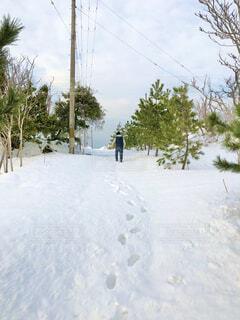 雪国の写真・画像素材[4138118]