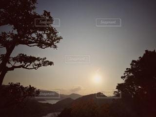 山を背景にした木の写真・画像素材[2920945]