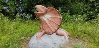 庭に座っているエリマキトカゲの写真・画像素材[3365133]