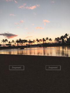 自然,風景,空,屋外,湖,太陽,ビーチ,夕暮れ,水面,光,ヤシの木,ハワイ