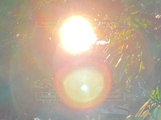 空,太陽,花火,光,明るい,景観