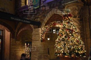 クリスマスツリーの写真・画像素材[2824479]