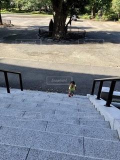 道路脇のベンチの写真・画像素材[2784999]