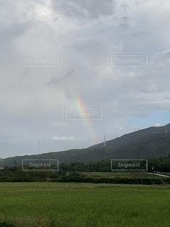 山を背景にした大きな緑の畑の写真・画像素材[2793988]