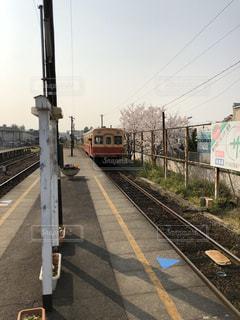 桜,駅,鉄道