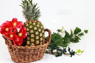 パイナップルの写真・画像素材[3210958]