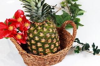 パイナップルの写真・画像素材[3210959]