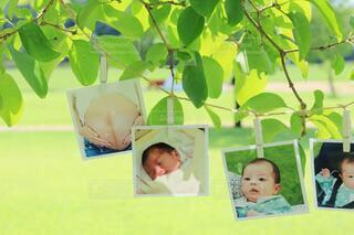 育児の思い出の写真・画像素材[3618896]