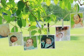 育児の思い出の写真・画像素材[3618895]