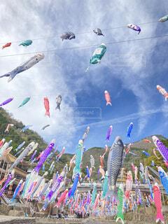 空を泳ぐ魚の写真・画像素材[4384964]