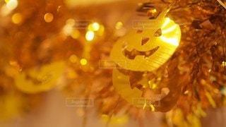 ハロウィン,かぼちゃ,パンプキン,ハロパ
