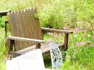お庭の椅子の写真・画像素材[4333743]