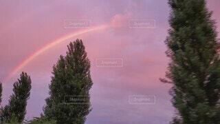 自然,空,屋外,ピンク,雲,綺麗,夕焼け,虹,紫,夕方,樹木,ドライブ,ダブルレインボー,虹色