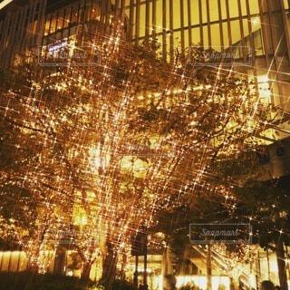 建物,冬,夜,カップル,屋外,大阪,かわいい,綺麗,デートスポット,撮影,観光,イルミネーション,都会,オシャレ,キラキラ,旅行,高層ビル,クリスマス,照明,可愛い,幸せ,梅田,happy,明るい,japan,大阪駅,デート,ハッピー,大好き,クリスマスツリー,OSAKA,幸福,ありがとう,出会い,好奇心,グランフロント,ゴールド,ナイト,定番,ワクワク,ファインダー,photo,ドキドキ,夜遊び,フォト,写真好き,聖夜,私の世界,グランフロント大阪,魅力的,デートコース,お写んぽ,follow,繋がる,PR,映える,シャンパンゴールド,誰かに見せたい景色,フォロー,間違いない,snap mart,ダレカニミセタイケシキ,冬の定番,魅せる,グランフロントクリスマス,写真は心のシャッター,日常にある幸せ