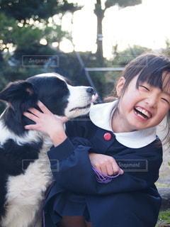 犬と戯れる少女の写真・画像素材[2914995]