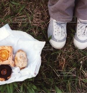 お散歩がてらのご近所ピクニックの写真・画像素材[4182136]