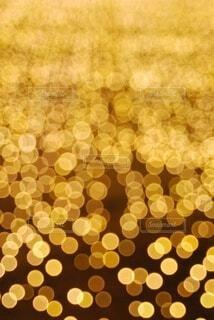 輝きのグラデーションの写真・画像素材[4554282]