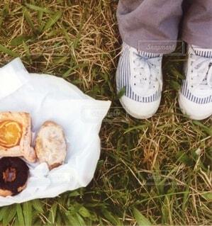 お散歩がてらのご近所ピクニックの写真・画像素材[4611663]