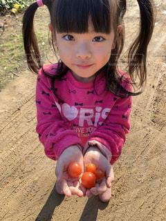 トマトを持つ少女の写真・画像素材[2814999]
