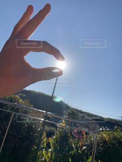 太陽さん捕まえた!の写真・画像素材[2797739]