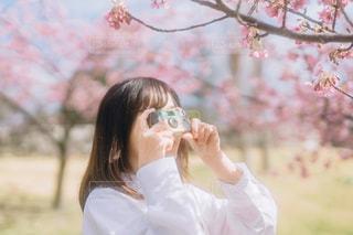 写ルンですに映る春の写真・画像素材[3034785]
