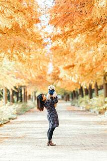 秋の散歩道の写真・画像素材[3717062]