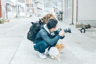 猫に囲まれての写真・画像素材[4211906]