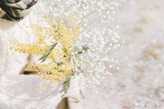 かすみ草とミモザの写真・画像素材[4211933]