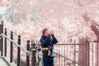 春のフォトウォークの写真・画像素材[4301647]