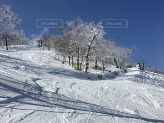 自然,風景,アウトドア,空,冬,スポーツ,雪,屋外,山,樹木,人物,スキー,ゲレンデ,レジャー,スキー場,斜面,日中