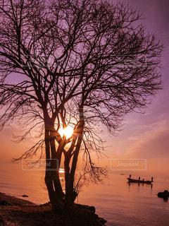 琵琶湖に沈む夕日とシルエットの写真・画像素材[2889783]