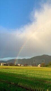 自然,風景,空,屋外,緑,雲,虹,山,レインボー,景色,草,美しい,感動的