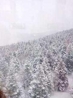 雪山の写真・画像素材[2823589]