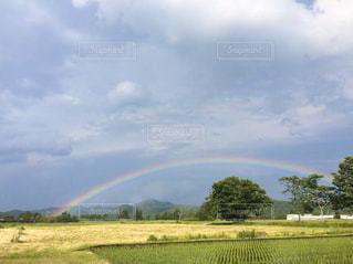 野原の上に虹をの写真・画像素材[3030371]