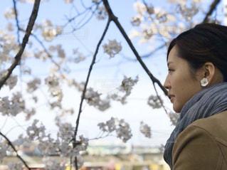 女性,1人,風景,空,花,桜,屋外,花見,樹木,人