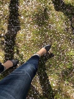 女性,1人,桜,屋外,足,花見,花びら,人,履物