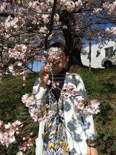 女性,1人,風景,花,春,桜,屋外,花見,樹木,人,服