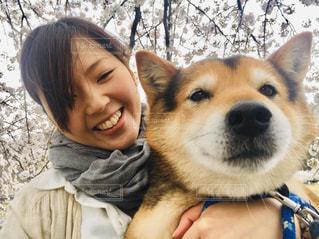 女性,1人,犬,春,桜,動物,屋外,かわいい,花見,人,ポーズ