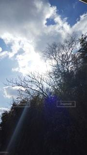自然,空,太陽,雲,光