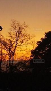 空,太陽,シルエット,光,朝,日ノ出