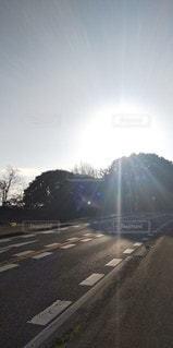 空,太陽,道路,光,樹木,道,日中,煜き