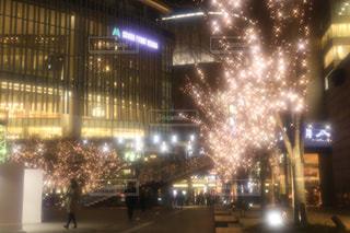 夜景,イルミネーション,グランフロント大阪,シャンパンゴールド,アンバサダー募集