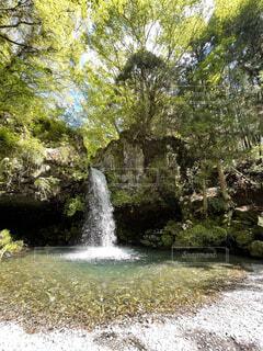 緑に囲まれた滝壺の写真・画像素材[4451429]