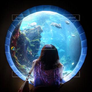 女性,海,魚,白,青,水,窓,水族館,光,観光,見上げる,癒し,旅行,丸,海外旅行,輪,円
