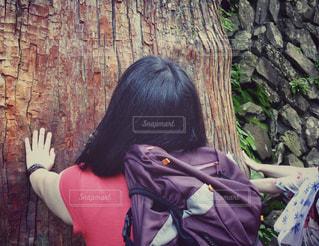 大山ご神木の写真・画像素材[1404761]