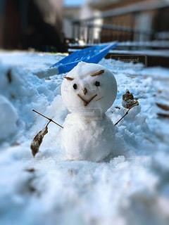 雪だるマンの写真・画像素材[2841931]